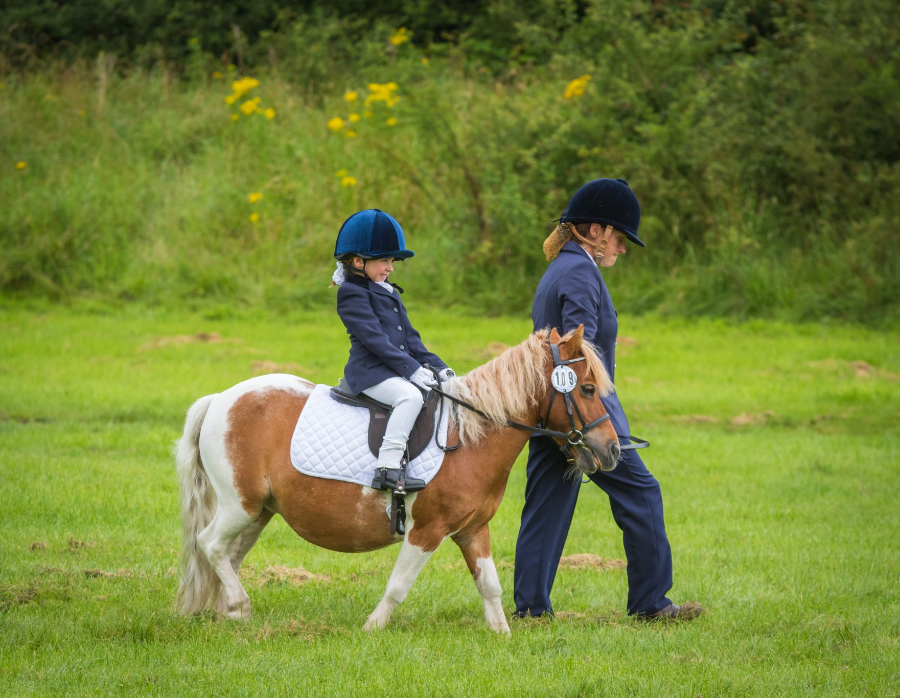 25th July – Dressage Results