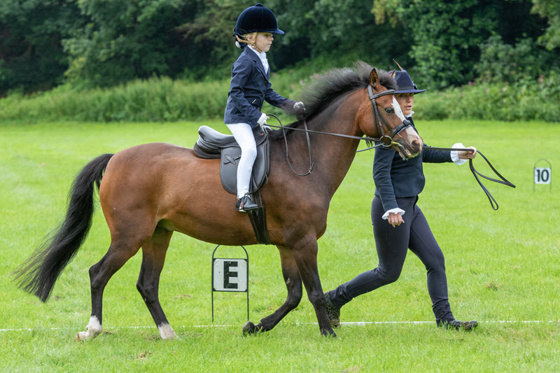 Unaffiliated Dressage – Sat 22nd August